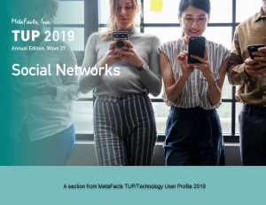 Cover of TUP 2019 Social Networks Chapter